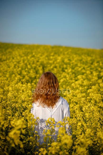 Задній вид на жінку, що стояли в полі гірчиці — стокове фото