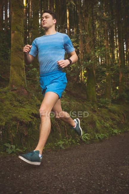 Молодой человек бегает в лесу — стоковое фото