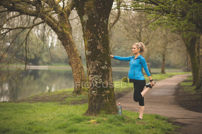 Beautiful pregnant woman exercising in the park — Stock Photo