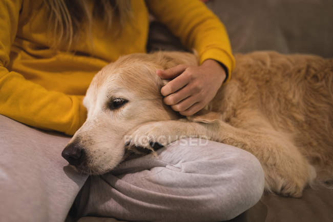 Fille caresse son chien dans le salon à la maison — Photo de stock