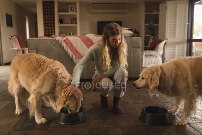 Teenager-Mädchen füttert ihre Hunde zu Hause — Stockfoto