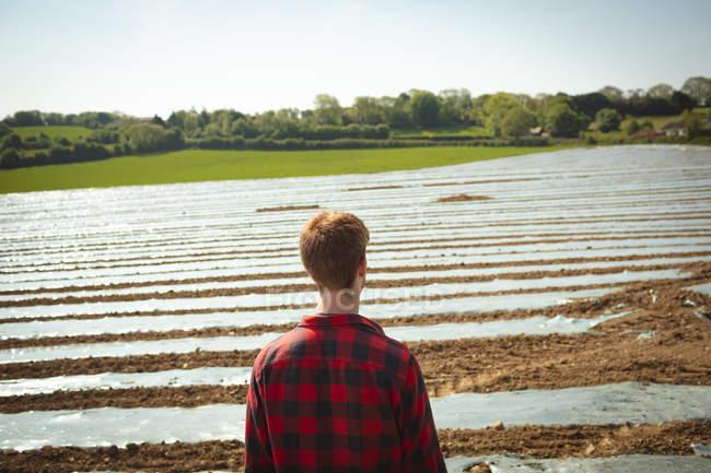 Задний вид человека, стоящего в поле — стоковое фото