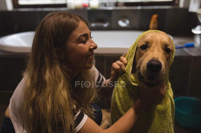 Дівчина очищення собака у ванній кімнаті в домашніх умовах — стокове фото