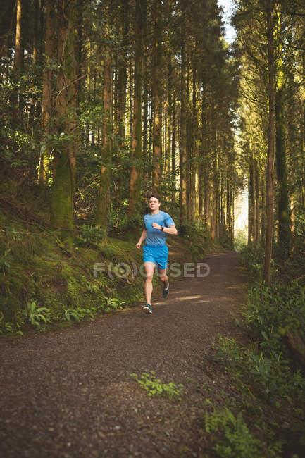 Joven trotando en el bosque - foto de stock