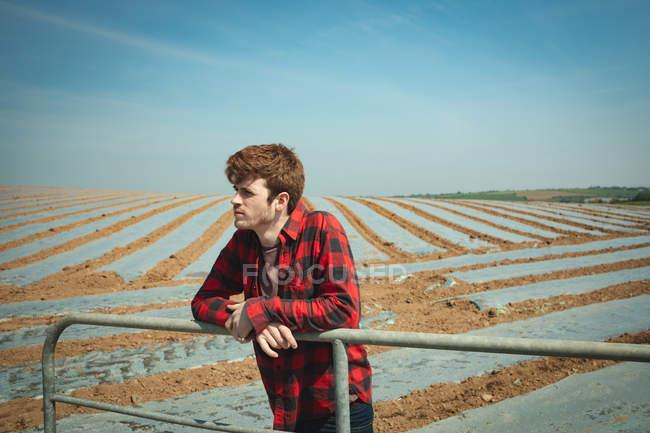 Человек, опирающийся на перила в поле в солнечный день — стоковое фото
