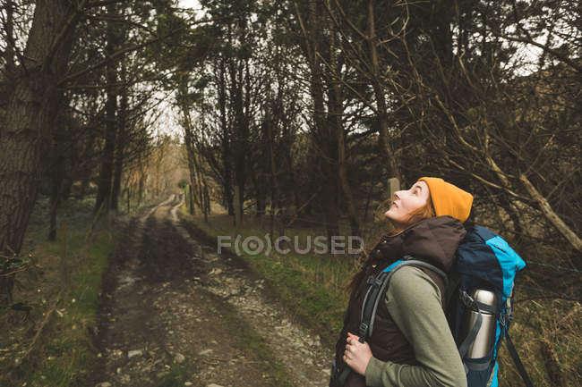 Beautiful female hiker with backpack looking around in the forest — Stock Photo