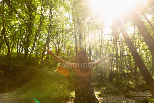 Rear view of woman standing in the forest with her hands spread — Stock Photo