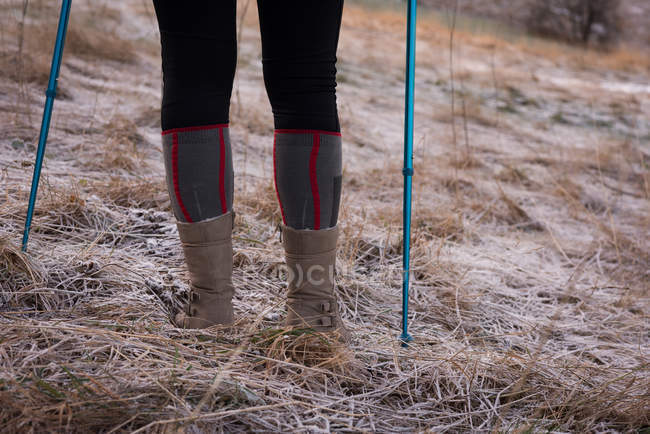 Low section of woman standing with hiking pole during winter — Stock Photo