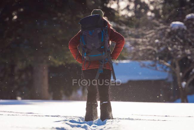 Vista posterior de la mujer de pie en el paisaje cubierto de nieve durante el invierno - foto de stock
