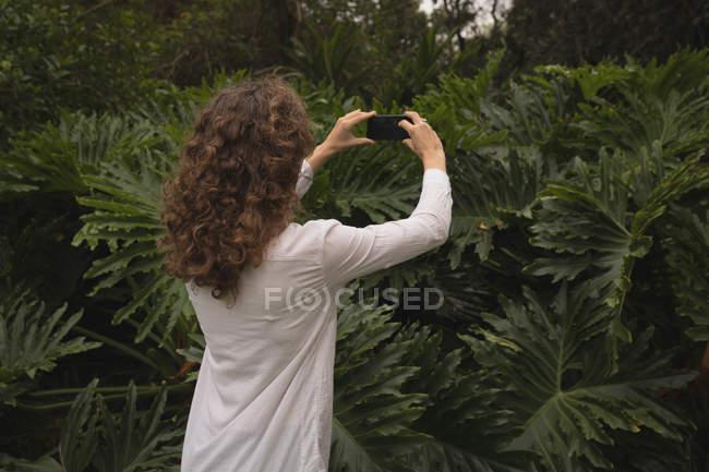 Mulher tirando foto de planta com telefone celular no jardim — Fotografia de Stock