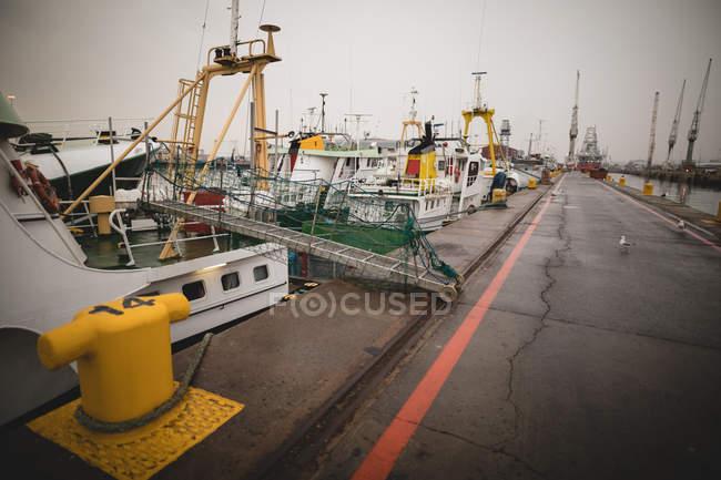 Buques de carga amarrados en los astilleros al atardecer - foto de stock
