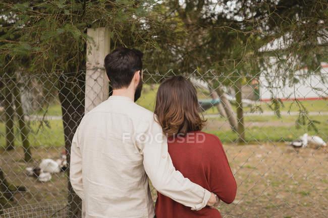 Rückansicht des Paares, das den Hahn auf der Ranch anschaut — Stockfoto