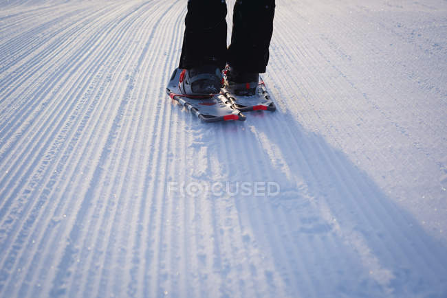 Low section of woman walking on snow covered landscape — Stock Photo