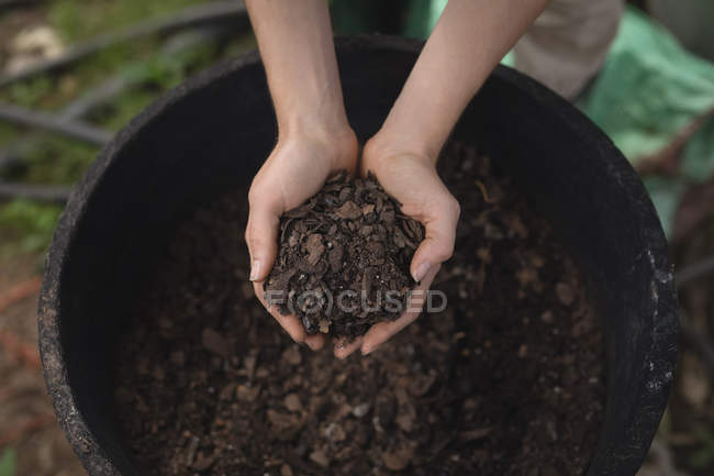 Female farmer holding a soil in the greenhouse — Stock Photo