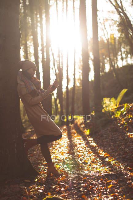 Donna in abiti caldi utilizzando il telefono cellulare nella foresta — Foto stock