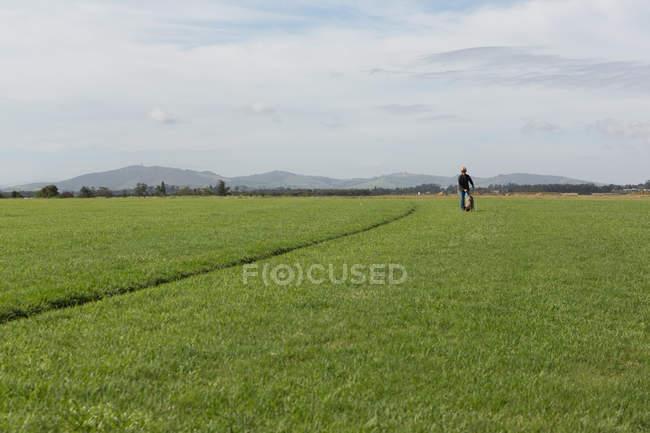 Человек с собакой в поле на расстоянии — стоковое фото