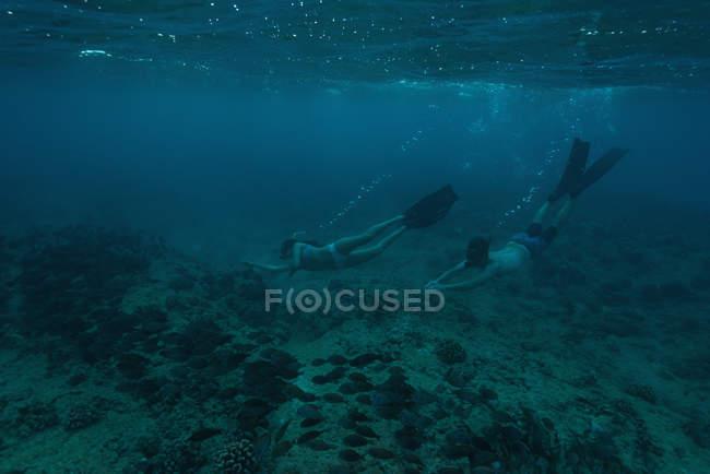 Пара подводное плавание под водой бирюзового моря over коралловый риф. — стоковое фото