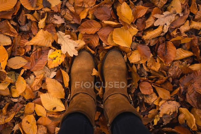 Sección baja de la mujer de pie en el parque - foto de stock