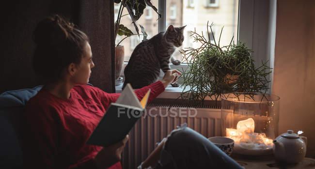 Женщина трогает своего домашнего кота на подоконнике дома — стоковое фото