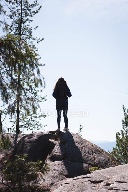Vista trasera del excursionista femenino de pie sobre roca durante el día soleado - foto de stock