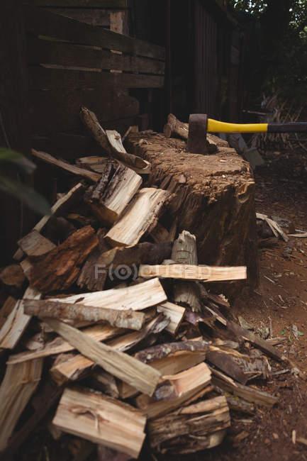 Hache sur tronc d'arbre avec des courbes de bois dans le jardin — Photo de stock