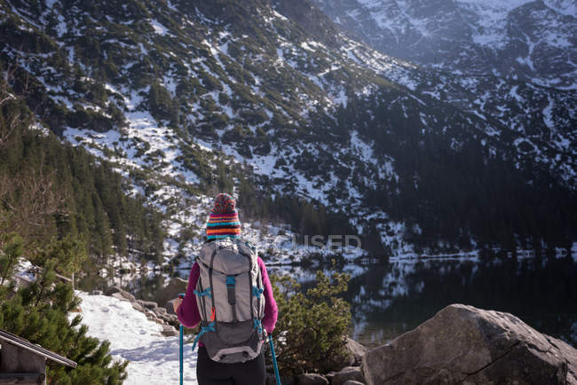 Rear view of female hiker walking at lakeside during winter — Stock Photo