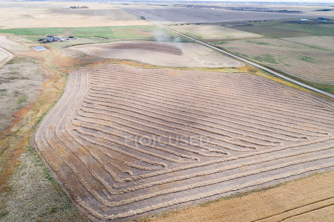 Aerial of empty road passing through wheat field — Stock Photo
