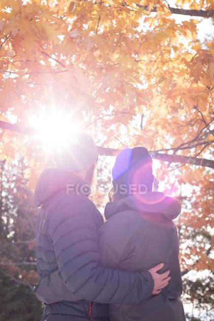 Задний вид пары, обнимающей друг друга осенью — стоковое фото