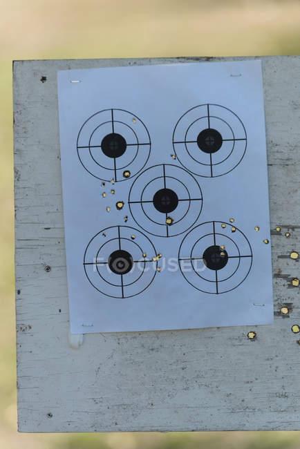 Цель стрельбища в солнечный день — стоковое фото
