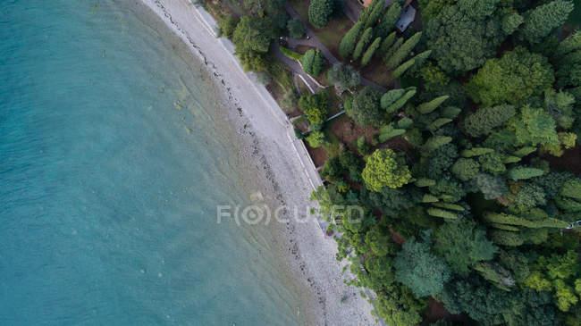 Vista aérea de litoral, com árvores — Fotografia de Stock