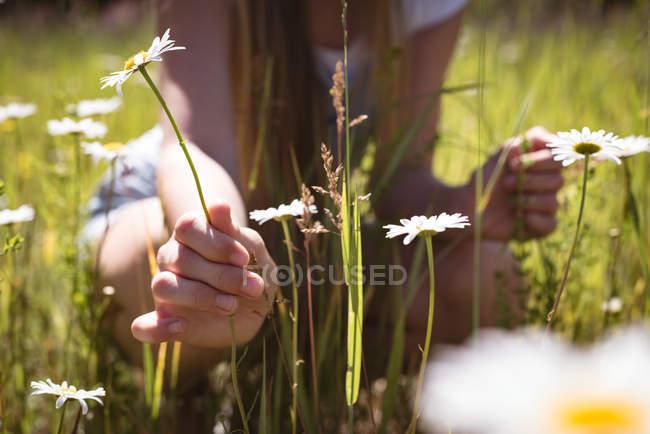 Girl touching flowers in green field in sunlight. — Stock Photo