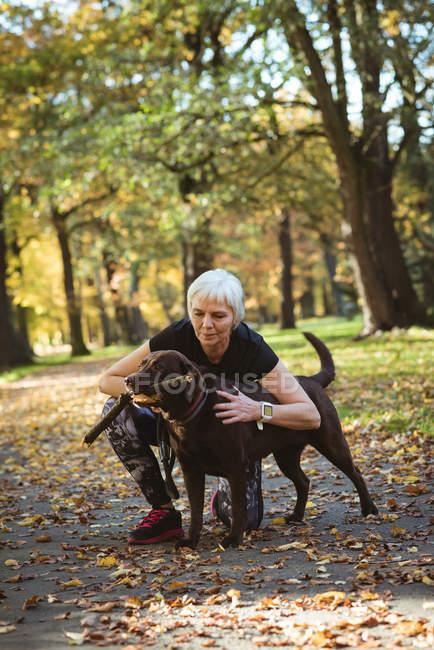 Старшая женщина гладит свою собаку в парке в солнечный день — стоковое фото