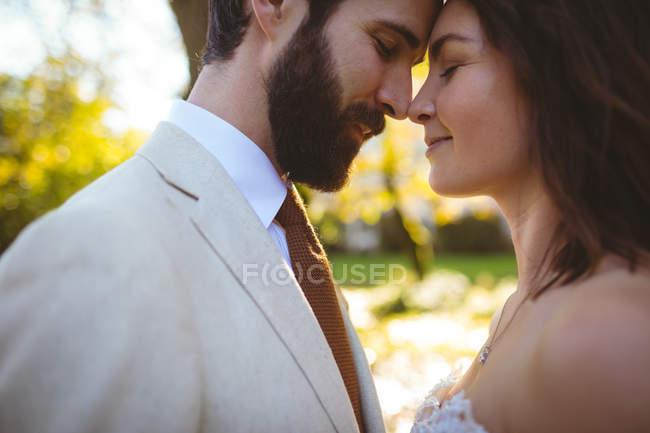 Gros plan des mariés qui s'embrassent dans le jardin — Photo de stock