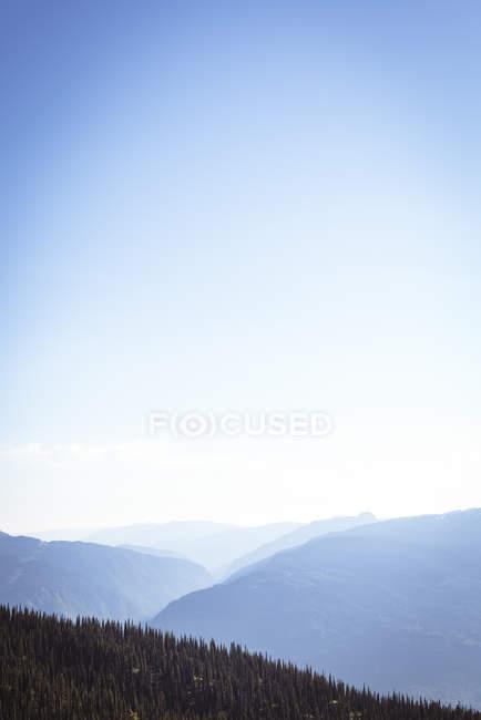 Густий ліс, покритий через Скелясті гори в денний час — стокове фото