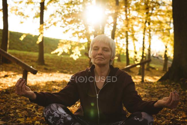 Старші жінки занять йогою в парку на сонячний день — стокове фото