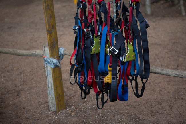 Harnesses hanging at starting point in ropes course — Stock Photo