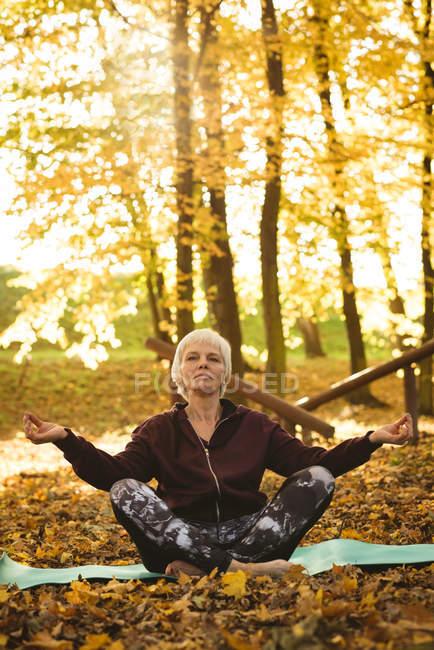 Femme âgée pratiquant le yoga dans un parc par une journée ensoleillée — Photo de stock