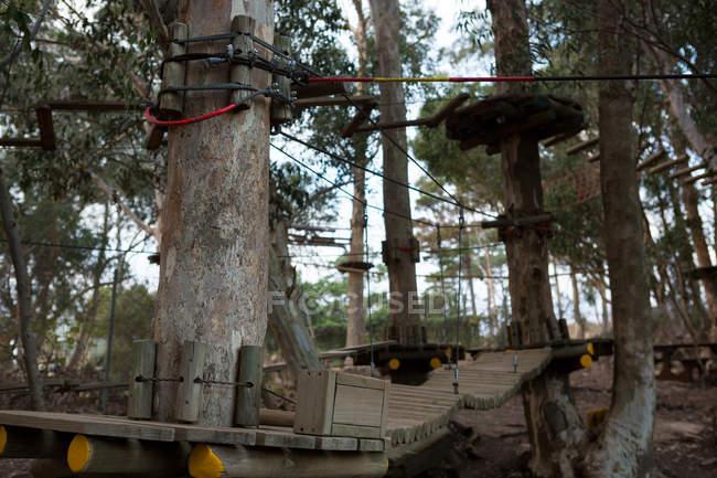 Equipamento de esportes de aventura de madeira na floresta — Fotografia de Stock