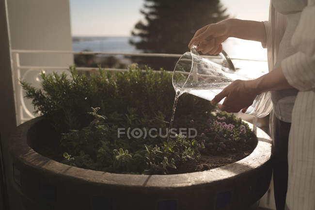 Mid section of woman standing in balcony watering the plants on a sunny day — Stock Photo