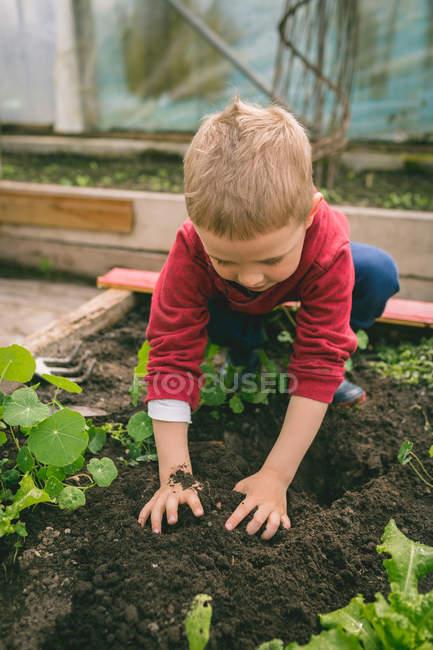 Close-up da criança plantio em estufa — Fotografia de Stock