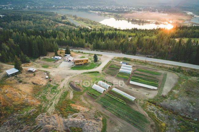 Повітряні рослинництва у фермі під час заходу сонця — стокове фото