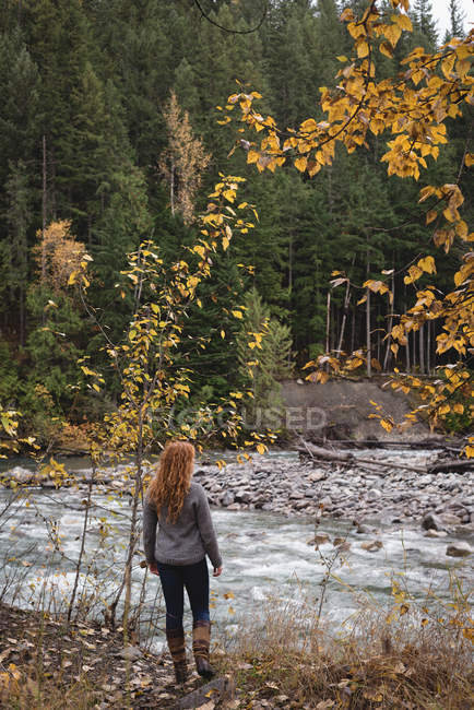 Rear view of woman walking towards the river in autumn forest — Stock Photo