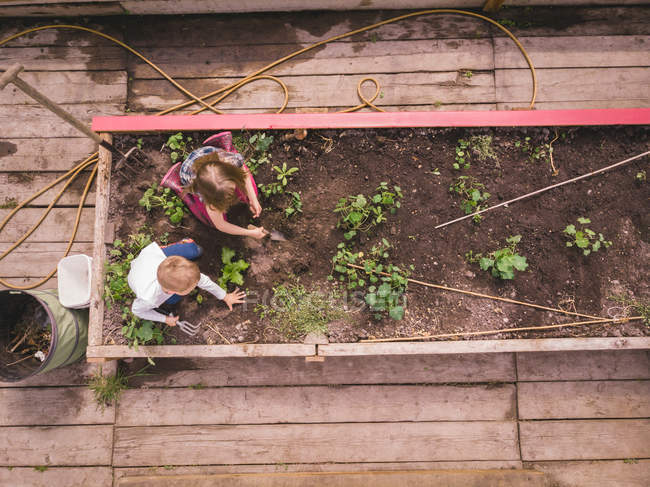 Jardinage des enfants ensemble en serre — Photo de stock