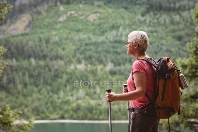 Mujer madura con bastones de senderismo de pie en el bosque - foto de stock