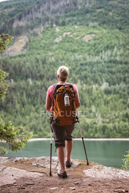 Rear view of mature man standing in the forest — Stock Photo