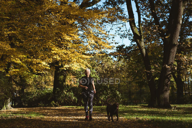 Senior woman walking in the park with her pet dog on a sunny day — Stock Photo