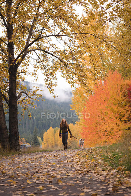 Carefree woman walking in autumn forest with pet dog — Stock Photo