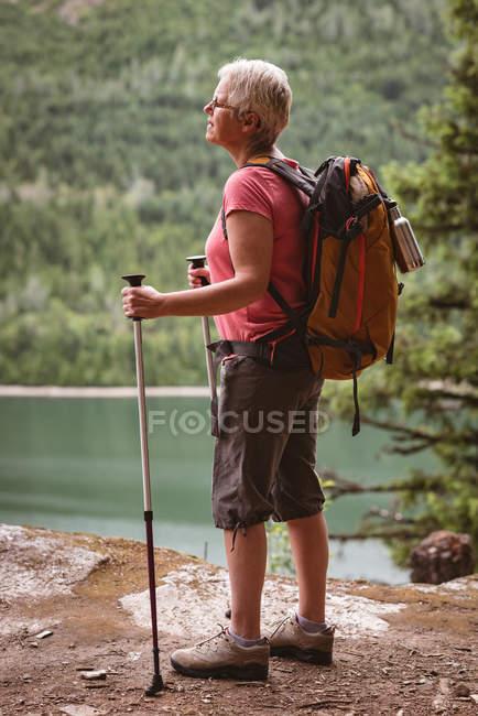 Femme mûre avec des bâtons de randonnée debout dans la forêt — Photo de stock