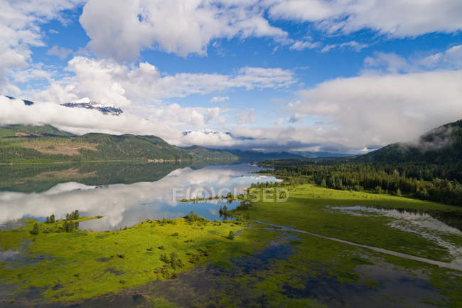 River flowing through marshy land on a sunny day — Stock Photo