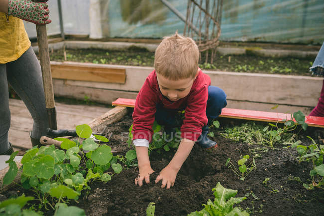 Cute Kid planting in greenhouse — Stock Photo